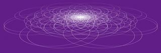 matrix4s8r0601b.jpg
